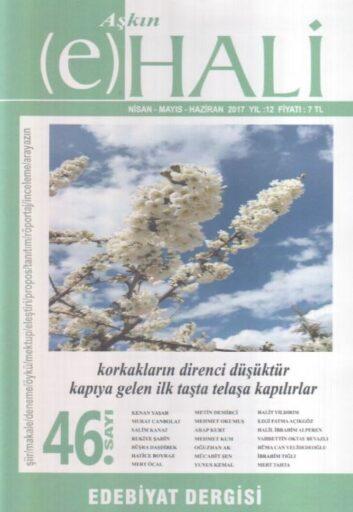 Aşkın E-Hali Dergisi - Sayı 46 - Nisan Mayıs Haziran 2017