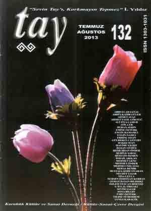Tay Dergisi - Sayı 132 - Temmuz Ağustos 2013