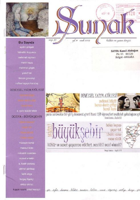 SUNAK DERGİSİ - SAYI 37 - OCAK 2013
