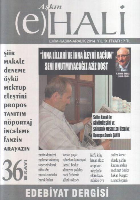 AŞKIN (E) HALİ DERGİSİ - SAYI 36 - EKİM KASIM ARALIK 2014