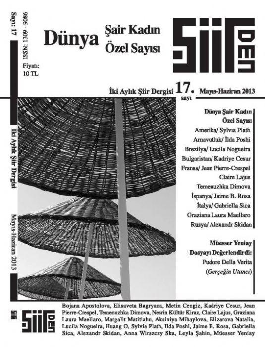 ŞİİRDEN DERGİSİ - SAYI 17 - MAYIS HAZİRAN 2013