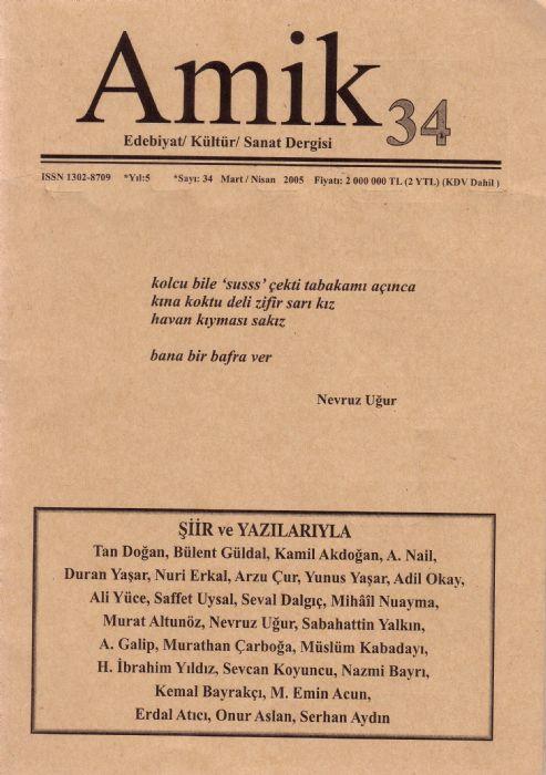 AMİK DERGİSİ - SAYI 34 - MART NİSAN 2005
