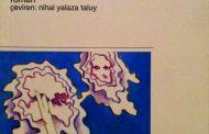 Bir Dostoyevski Romanı: İnsancıklar
