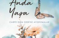 Güzelliği Anda Yaşa, Kitap, Mehmet Özaytürk