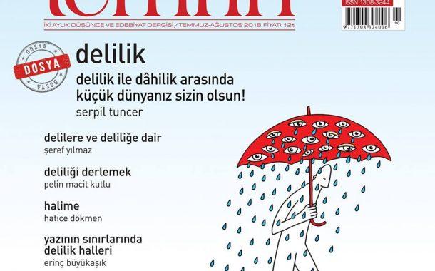 Temrin Edebiyat Dergisi, Sayı 90, Temmuz Ağustos 2018