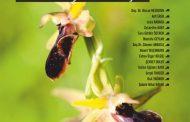 Mevsimler Dergisi, Sayı 17, Eylül Ekim 2018
