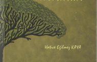Şiir Kitabı: İnceciktir Kırılmak