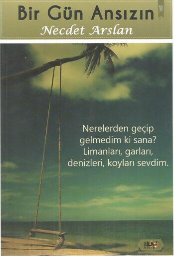 Kitap, Bir Gün Ansızın, Necdet Arslan