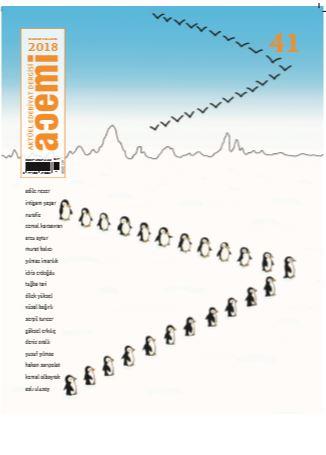 Acemi İki Aylık Edebiyat Dergisi, Sayı 41, Kasım Aralık 2018