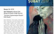 Hece Edebiyat Dergisi, Sayı 266, Şubat 2019