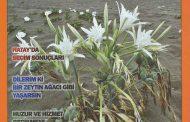 Güney Rüzgarı Dergisi, Sayı 228