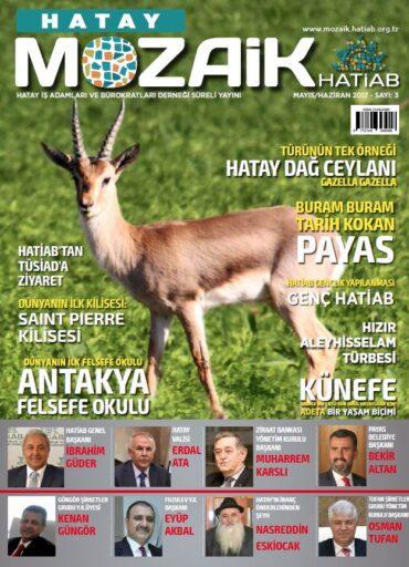 Hatay Mozaik Dergisi, Sayı 3