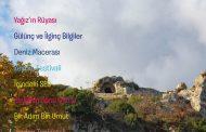 Zeytin Kültür ve Edebiyat Dergisi,