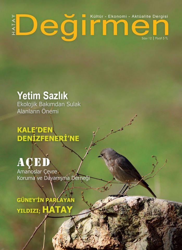 Hatay Değirmen Dergisi, Sayı 12