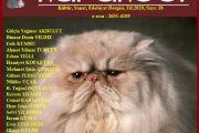 Karakedi Dergisi, Sayı 38